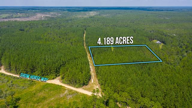 4.1 Acres Meander Creek Lane, Laurel Hill, FL 32567 (MLS #852490) :: Keller Williams Realty Emerald Coast