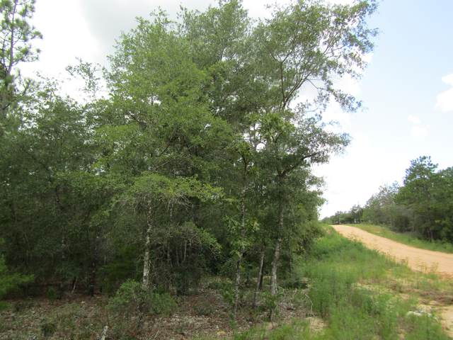 LOT 11 Juniper Avenue, Defuniak Springs, FL 32433 (MLS #852819) :: Keller Williams Realty Emerald Coast