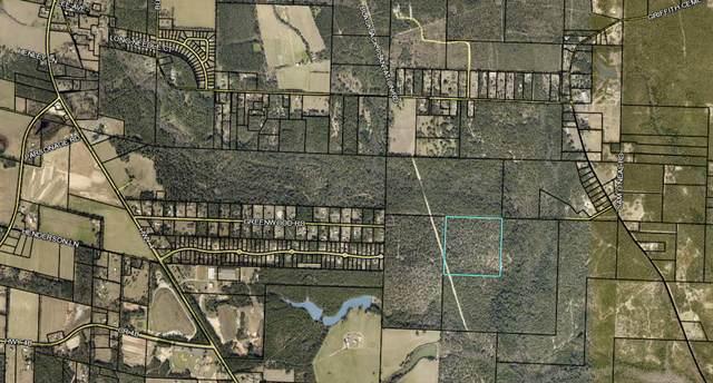 40 Acres, Baker, FL 32531 (MLS #852951) :: Classic Luxury Real Estate, LLC