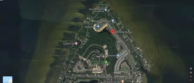 309 Loblolly Bay Drive, Santa Rosa Beach, FL 32459 (MLS #853082) :: Vacasa Real Estate