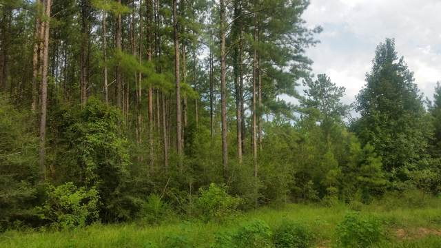 Lot 14 Reedy Creek Crosing, Westville, FL 32464 (MLS #853116) :: Somers & Company