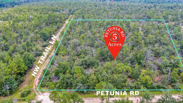 000 NW Petunia Road, Fountain, FL 32438 (MLS #853258) :: Vacasa Real Estate