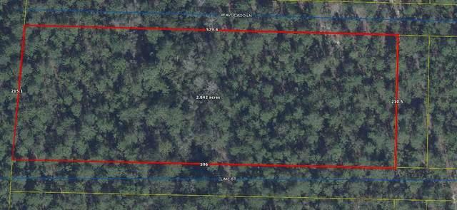 2.8 Ac W Avacado Lane, Defuniak Springs, FL 32433 (MLS #853436) :: ENGEL & VÖLKERS
