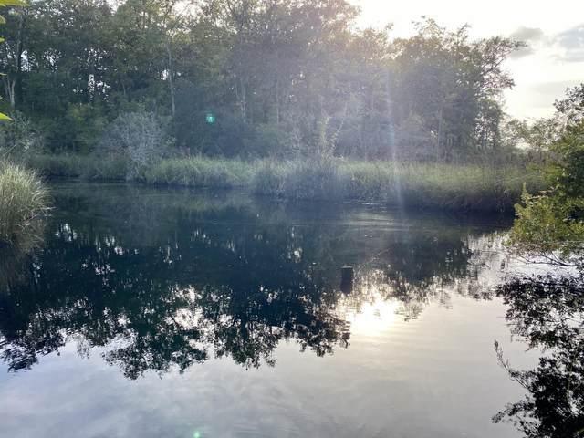 10 Waterview Cove Drive, Freeport, FL 32439 (MLS #854536) :: Keller Williams Realty Emerald Coast