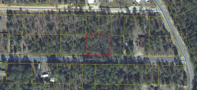 Lt 35 & 36 E Tiger Lily Drive, Defuniak Springs, FL 32433 (MLS #855265) :: Back Stage Realty