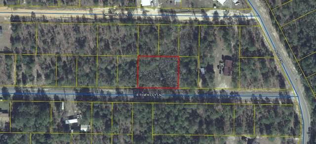Lt 35 & 36 E Tiger Lily Drive, Defuniak Springs, FL 32433 (MLS #855265) :: ENGEL & VÖLKERS
