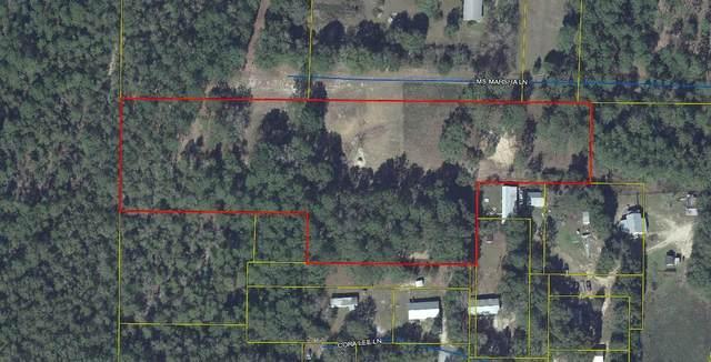 169 Miss  Marsha Lane, Defuniak Springs, FL 32433 (MLS #855320) :: The Premier Property Group