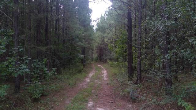 80 acres S Jack Rd, Laurel Hill, FL 32567 (MLS #855879) :: Linda Miller Real Estate