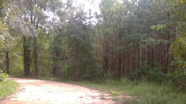 15 acres S Jack Rd, Laurel Hill, FL 32567 (MLS #855959) :: Counts Real Estate Group
