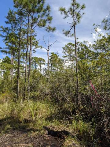 Lot 9 Calm Gulf Drive, Santa Rosa Beach, FL 32459 (MLS #856025) :: The Chris Carter Team