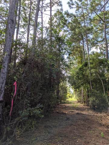 Lots 10-11 Calm Gulf Drive, Santa Rosa Beach, FL 32459 (MLS #856033) :: Briar Patch Realty