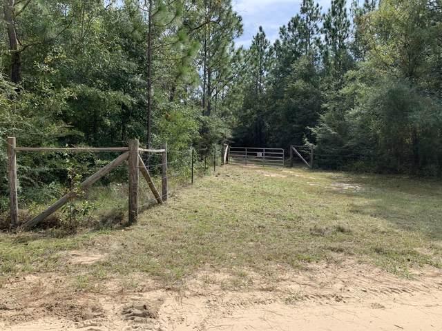 4503 Cedar Springs Farm Road, Holt, FL 32564 (MLS #856137) :: 30A Escapes Realty