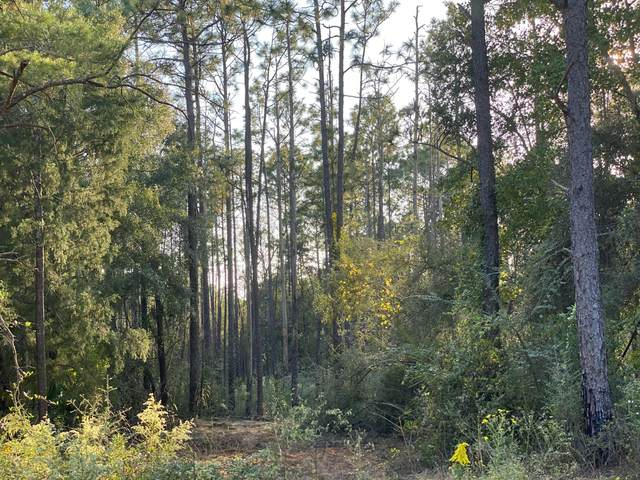 0000 Caswell Drive, Defuniak Springs, FL 32435 (MLS #857363) :: Berkshire Hathaway HomeServices Beach Properties of Florida