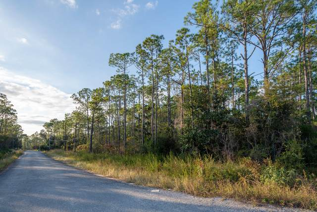 Lot 12 Indian Woman Road, Santa Rosa Beach, FL 32459 (MLS #857601) :: Classic Luxury Real Estate, LLC