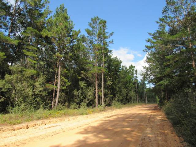 10 Acres Caswell Drive, Defuniak Springs, FL 32435 (MLS #858037) :: Briar Patch Realty
