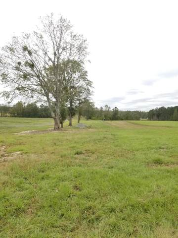 34 Acres Ludlum Road, Laurel Hill, FL 32567 (MLS #858386) :: Scenic Sotheby's International Realty