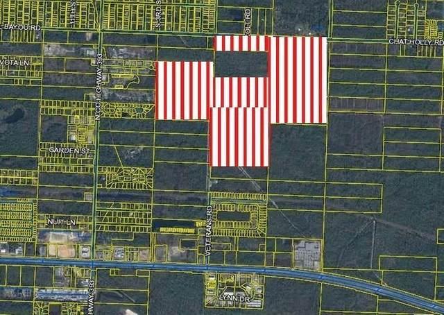 180 Acres Chat Holly Road, Santa Rosa Beach, FL 32459 (MLS #858815) :: Coastal Luxury