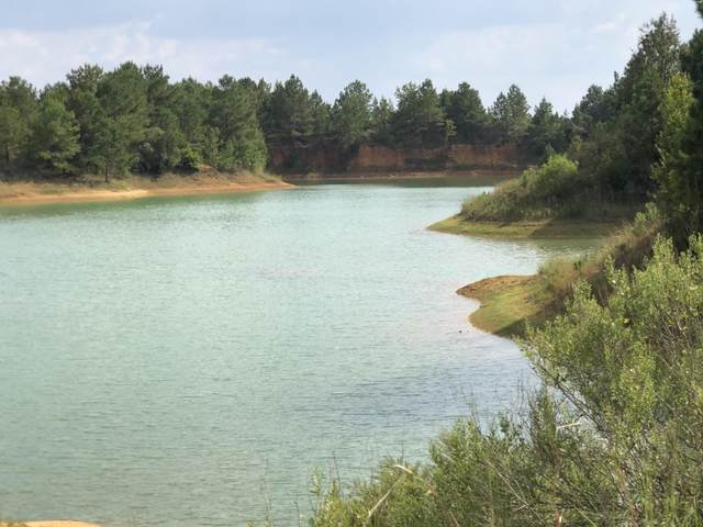 3+/- AC Ccc Trail Road, Other, AL  (MLS #860282) :: Vacasa Real Estate