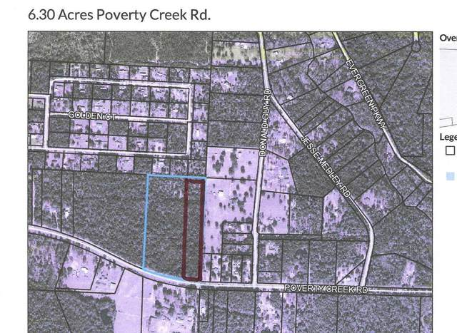 XXX Poverty Creek Road, Crestview, FL 32539 (MLS #862835) :: 30a Beach Homes For Sale