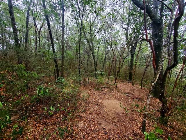 .68 ac xxx Seneca Trail, Crestview, FL 32536 (MLS #863053) :: The Chris Carter Team
