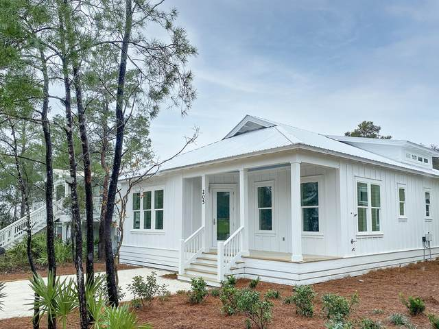 205 Dalton Drive, Santa Rosa Beach, FL 32459 (MLS #863082) :: Somers & Company