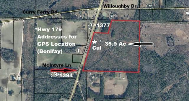 36 Ac Hwy 179, Bonifay, FL 32425 (MLS #863840) :: Linda Miller Real Estate