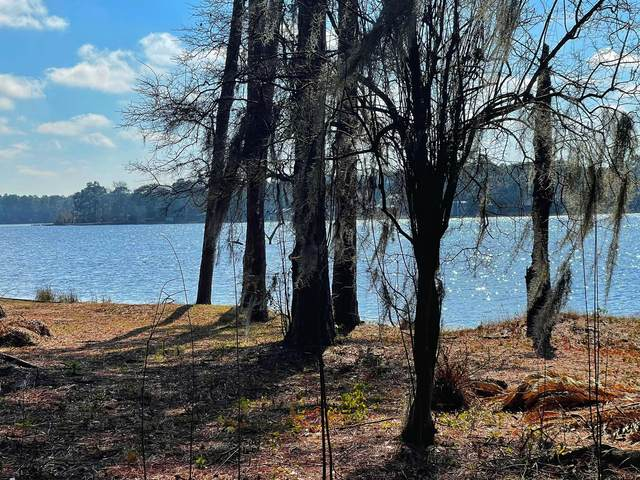 66 Serenity Circle, Defuniak Springs, FL 32433 (MLS #865122) :: Briar Patch Realty
