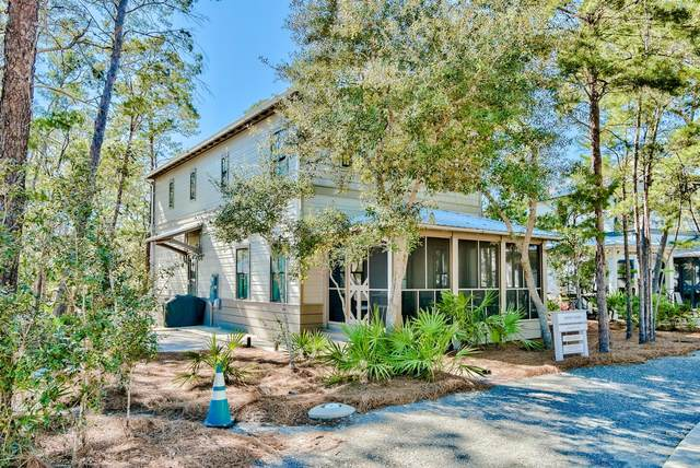 587 Patina Boulevard, Seacrest, FL 32461 (MLS #865371) :: Keller Williams Realty Emerald Coast