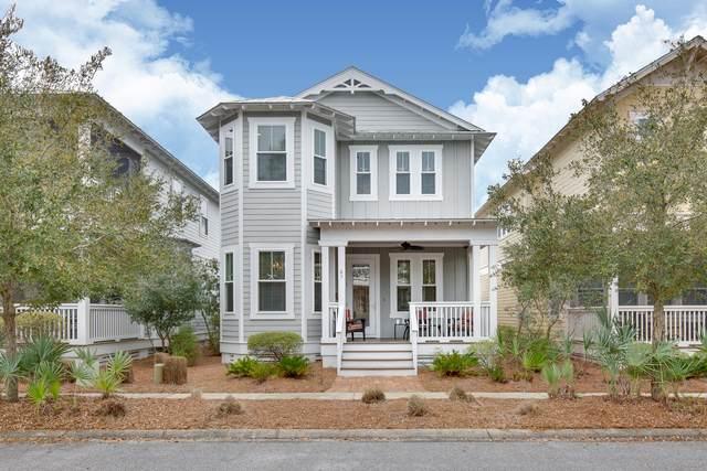 65 Cinnamon Fern Lane, Santa Rosa Beach, FL 32459 (MLS #865741) :: Linda Miller Real Estate