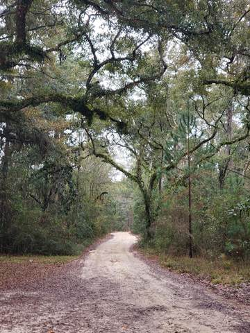 lot 15 Obacs Lane, Freeport, FL 32439 (MLS #865944) :: Scenic Sotheby's International Realty