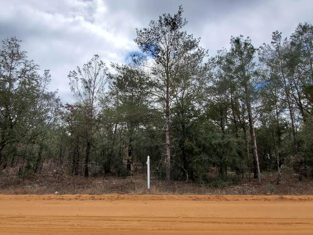 Lot 10 Passion Flower Street, Defuniak Springs, FL 32433 (MLS #866000) :: Back Stage Realty