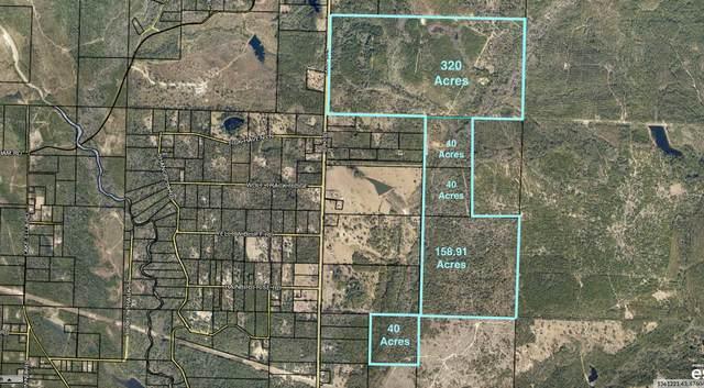 000 393 Highway, Crestview, FL 32539 (MLS #866077) :: Better Homes & Gardens Real Estate Emerald Coast