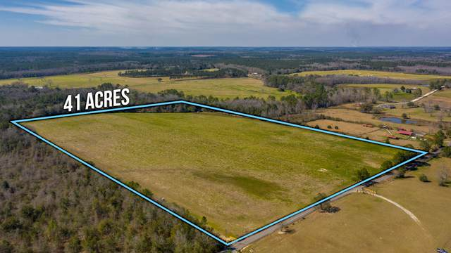 41 ACRES Schofield Rd, Defuniak Springs, FL 32433 (MLS #866534) :: Scenic Sotheby's International Realty