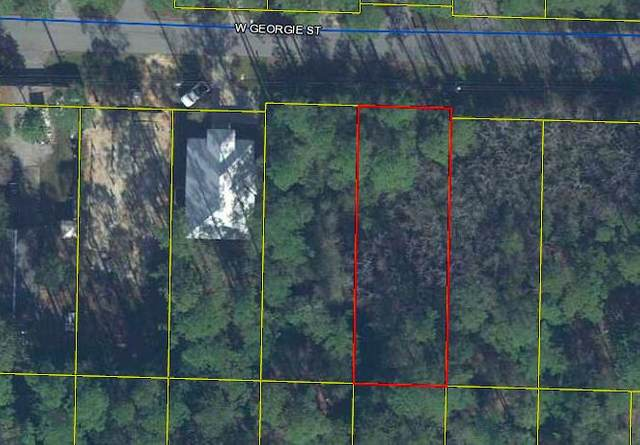 Lot 17 W Georgie Street, Santa Rosa Beach, FL 32459 (MLS #866933) :: Briar Patch Realty