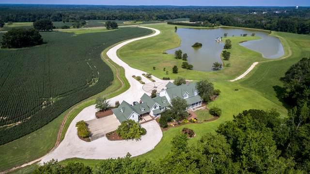 10731 Opp Highway Highway, Other, AL  (MLS #867352) :: Scenic Sotheby's International Realty