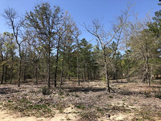 Lot 17 Wagner Dr., Defuniak Springs, FL 32433 (MLS #868039) :: Coastal Lifestyle Realty Group