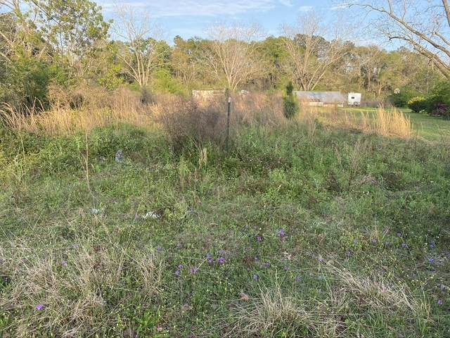 24.93 AC Eighth St, Laurel Hill, FL 32567 (MLS #868206) :: Scenic Sotheby's International Realty