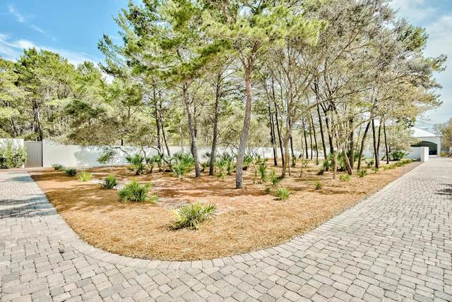 00 Walton Rose Lane, Inlet Beach, FL 32461 (MLS #868297) :: Rosemary Beach Realty