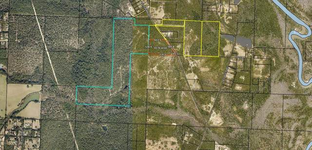 141 AC Buck Ward Road, Baker, FL 32531 (MLS #868497) :: Coastal Lifestyle Realty Group