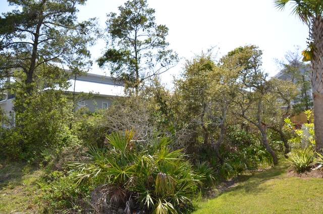 Lot 1J Lakeland Drive, Miramar Beach, FL 32550 (MLS #868878) :: RE/MAX By The Sea