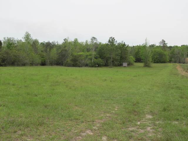 50 AC Gillman Rd, Westville, FL 32464 (MLS #869242) :: Better Homes & Gardens Real Estate Emerald Coast