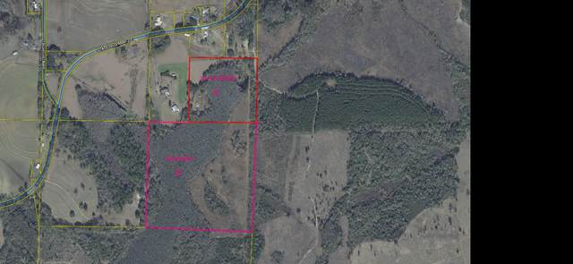 56.42 acre State Hwy 2 E, Westville, FL 32464 (MLS #869362) :: RE/MAX By The Sea