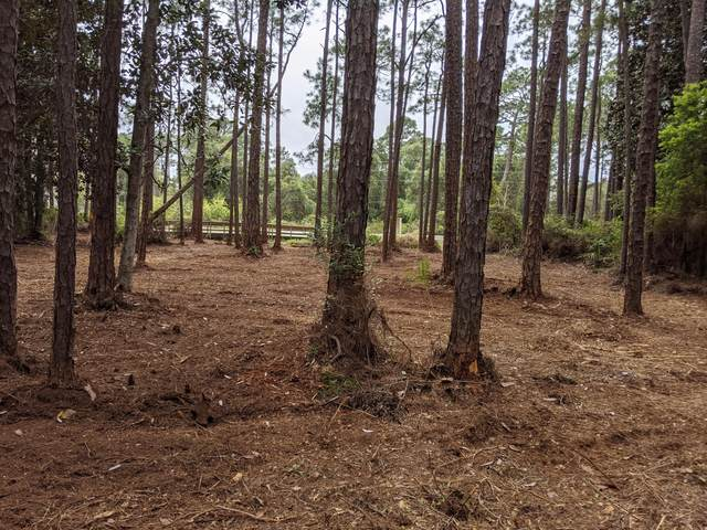 LOT 8 E County Hwy 30A, Santa Rosa Beach, FL 32459 (MLS #869544) :: Berkshire Hathaway HomeServices Beach Properties of Florida