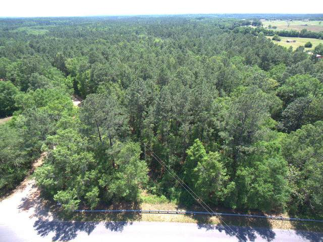 TBD Charlie Day Road, Baker, FL 32531 (MLS #869875) :: John Martin Group | Berkshire Hathaway HomeServices PenFed Realty