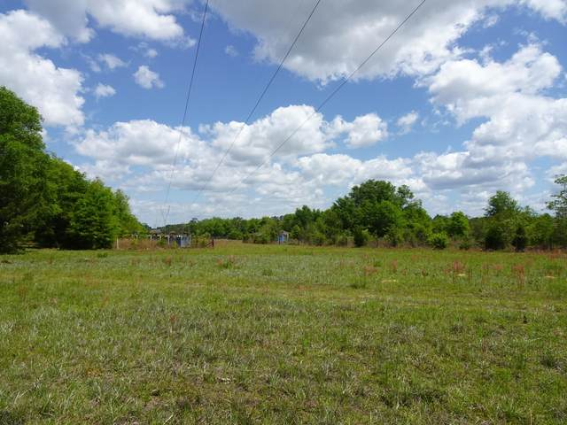 xx Spring Lake Road, Defuniak Springs, FL 32433 (MLS #870409) :: Linda Miller Real Estate