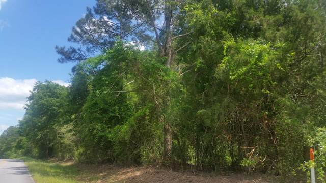 59 ACRES Punch Bowl Road, Defuniak Springs, FL 32433 (MLS #870447) :: Scenic Sotheby's International Realty