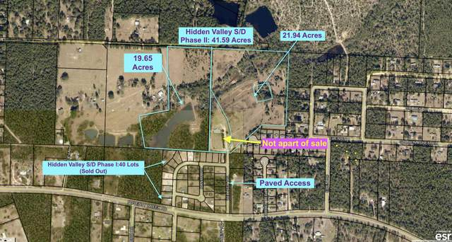 000 Horne Hollow Road, Crestview, FL 32539 (MLS #870665) :: Scenic Sotheby's International Realty