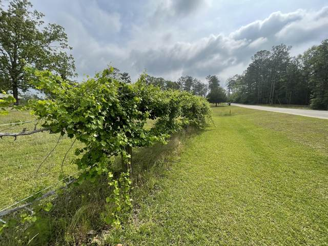12.49 AC Stateline Road, Baker, FL 32531 (MLS #870682) :: Better Homes & Gardens Real Estate Emerald Coast