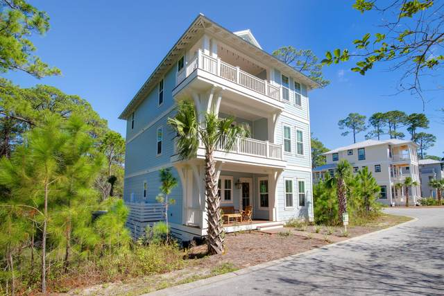 196 Redbud Lane, Inlet Beach, FL 32461 (MLS #871108) :: Engel & Voelkers - 30A Beaches
