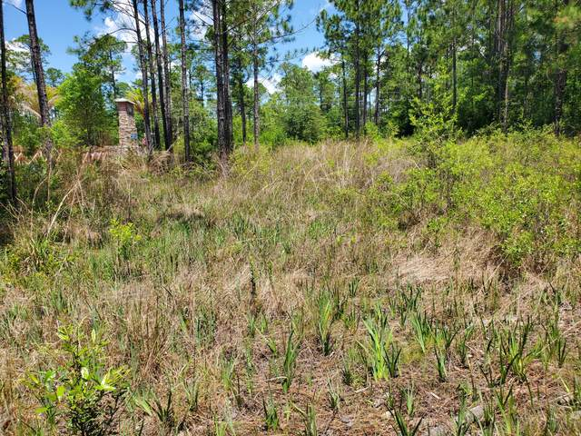 Lot 9 Co Hwy 3280, Freeport, FL 32439 (MLS #871473) :: Counts Real Estate Group